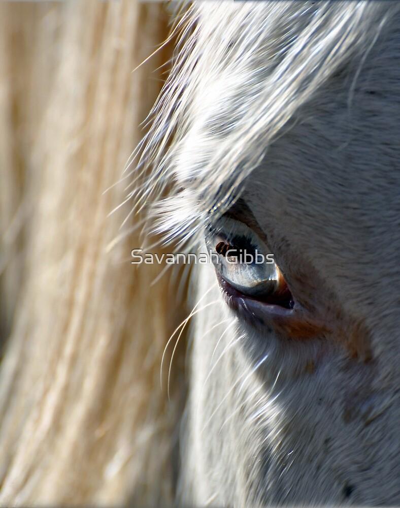 Horse Eye by Savannah Gibbs