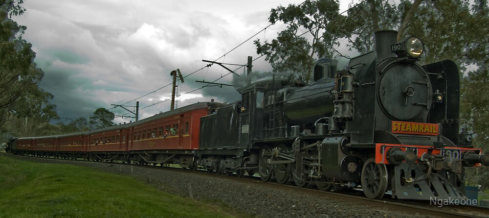 Hurstbridge Wattle Festival Steam Train by Ngakeone