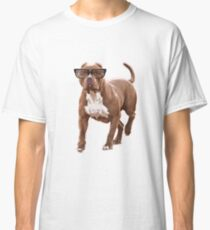 Funny pit bull in glasses Classic T-Shirt