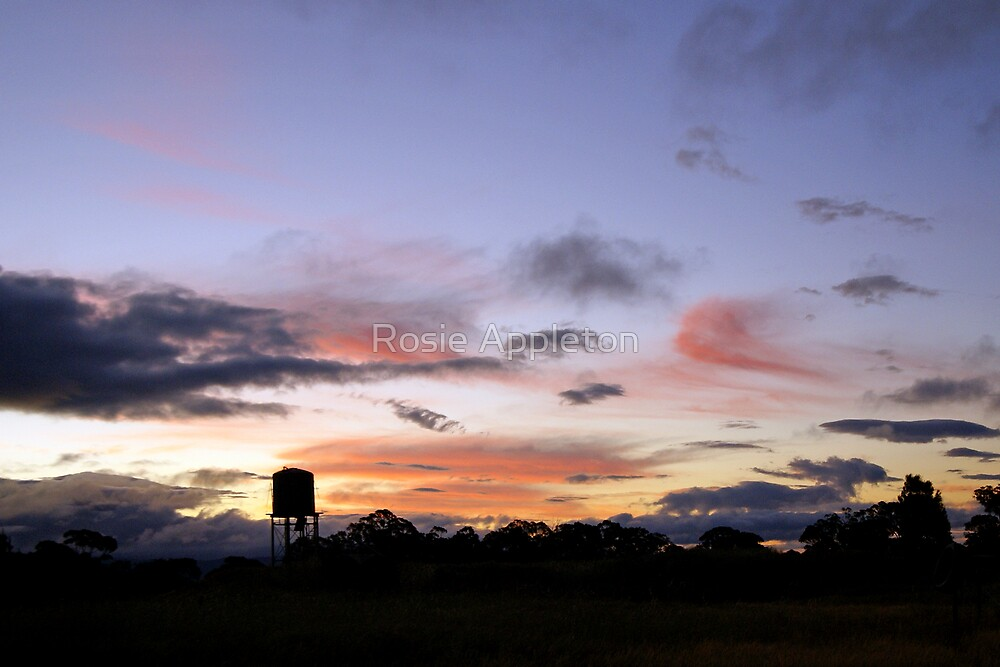 Last light - Dadswells Bridge, Victoria by Rosie Appleton