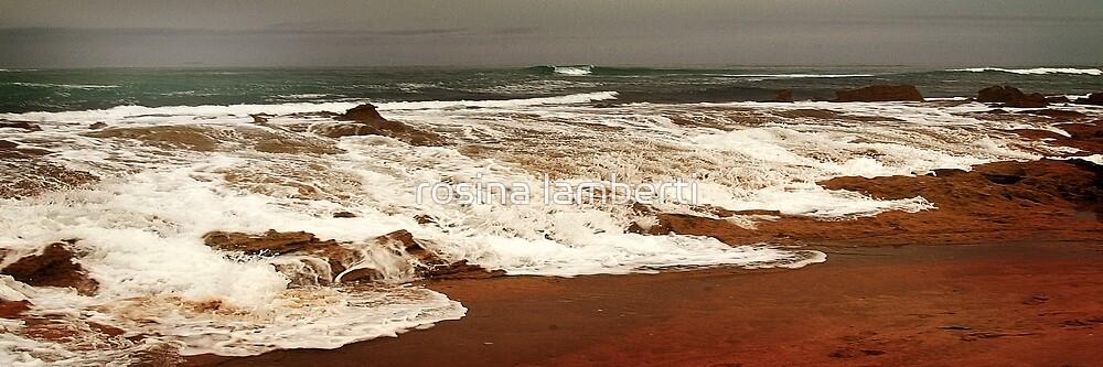 Cape Schanck by rosina lamberti