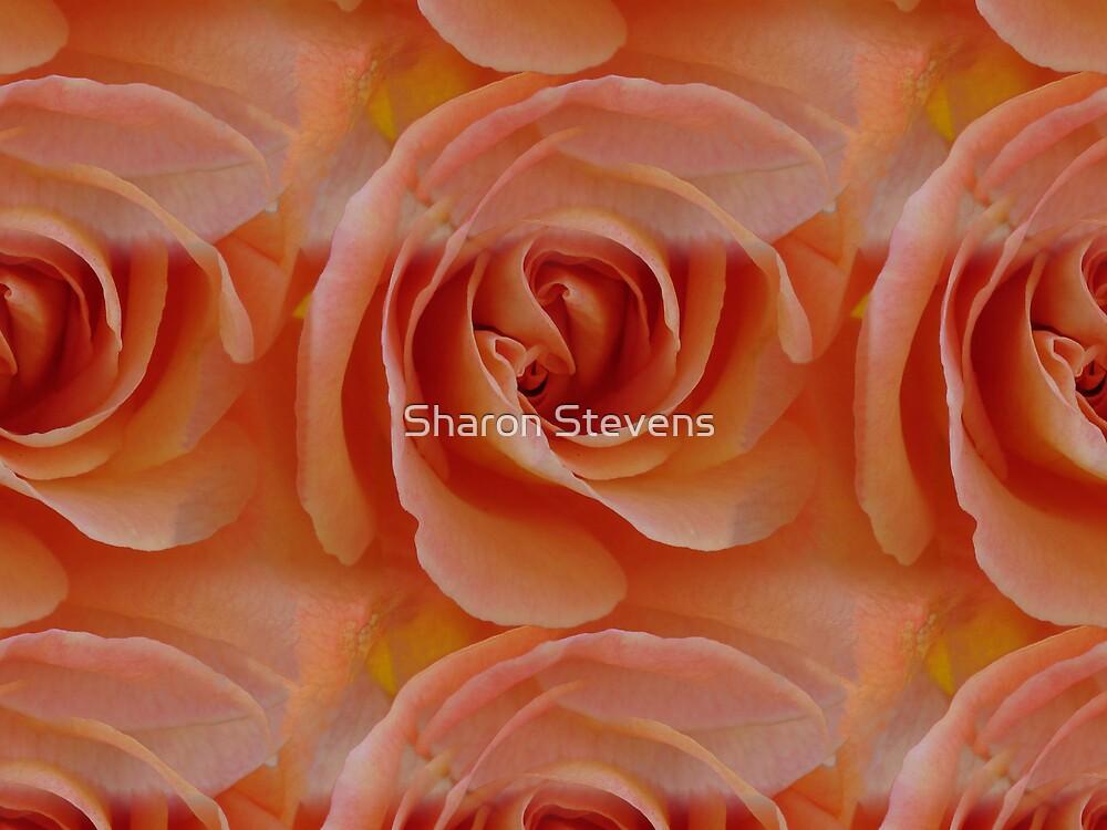 Roses Roses Roses by Sharon Stevens