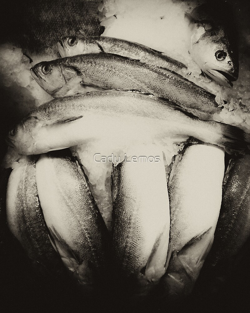 fish mono by Cadu Lemos