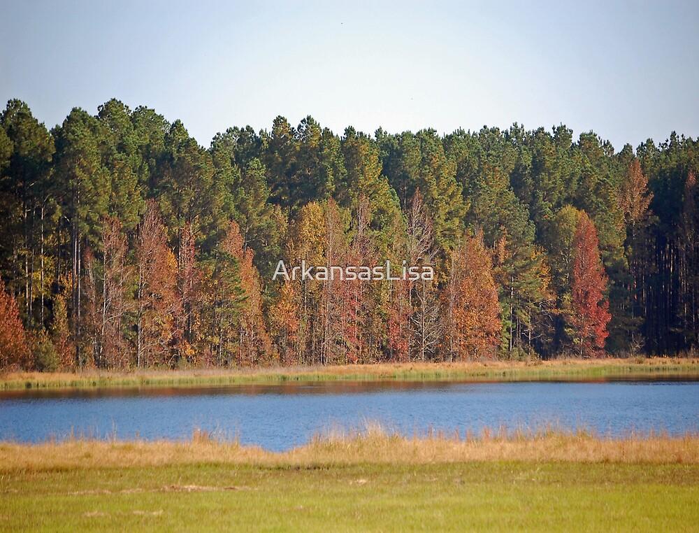 Autumn at Big Pond by ArkansasLisa