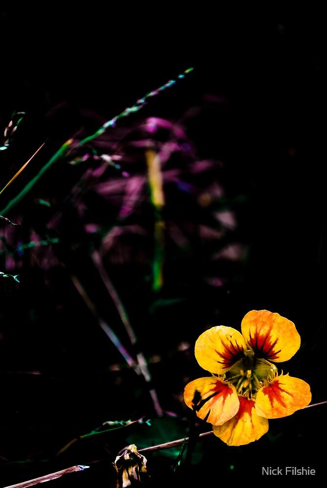 Bright Flower by Nick Filshie