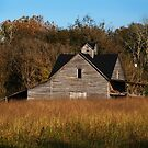 This old House by Richard G Witham