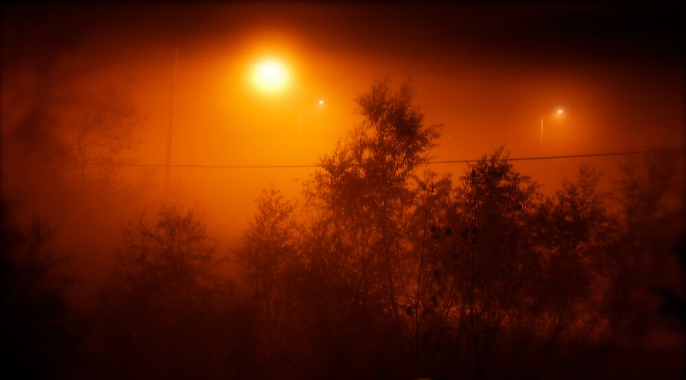 Fog Lights @ 3:00 a.m. by Robert Baker