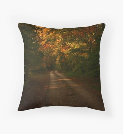 Tennessee Country Road Throw Pillow