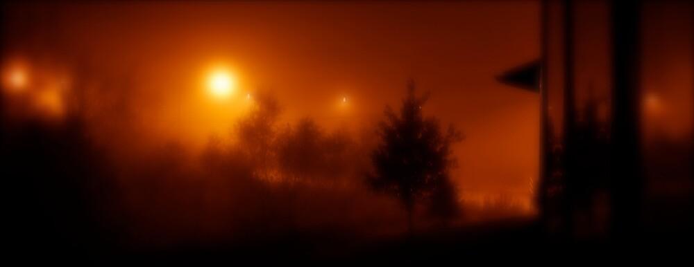 Fog Lights @ 3:00 a.m. by Robert Baker