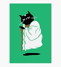 Yoda Cat Photographic Print