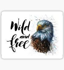 Eagle Wild and Free, american,  falcon, watercolor, kostart Sticker