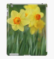 Shropshire Daffodils  iPad Case/Skin