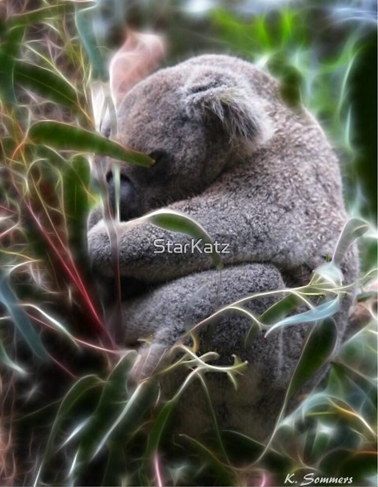 Koala Dreams by StarKatz