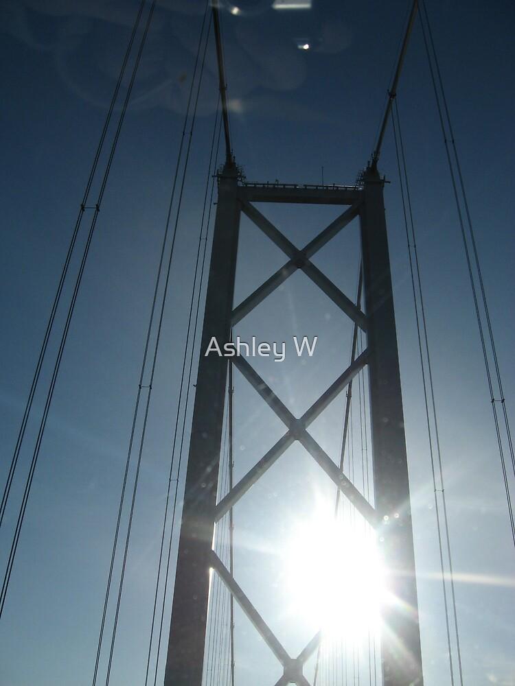 Go Forth and Shine by Ashley W