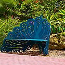 The Blue Bench with a View by Virginia N. Fred