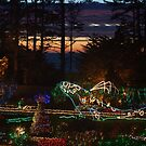 Shore Acres Holiday Lights Whale - Plain by MyDigitalOregon