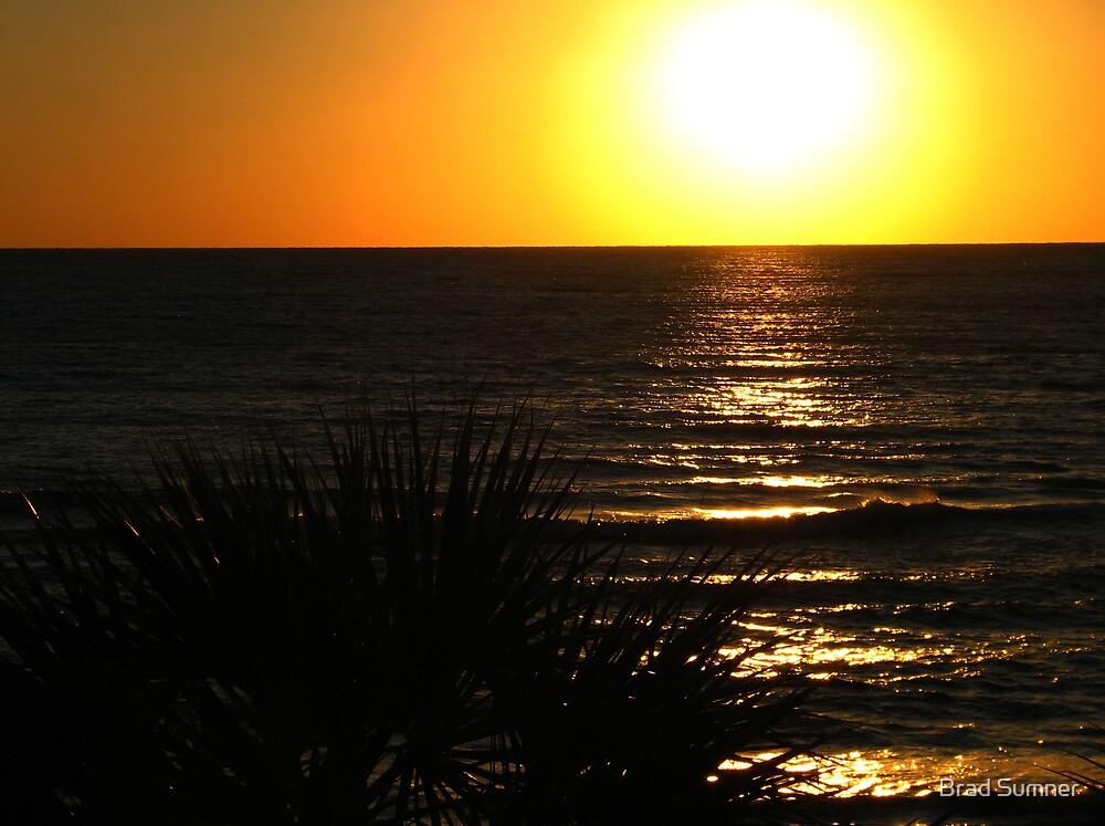 Golden Sunset by Brad Sumner