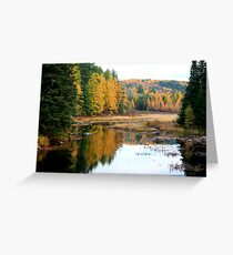 Opeongal Provincial Park Greeting Card