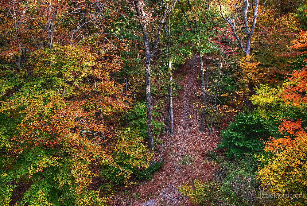 Hiking  by LizzieMorrison