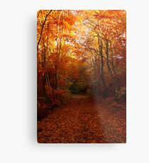 Autumn path, warm colors Metal Print