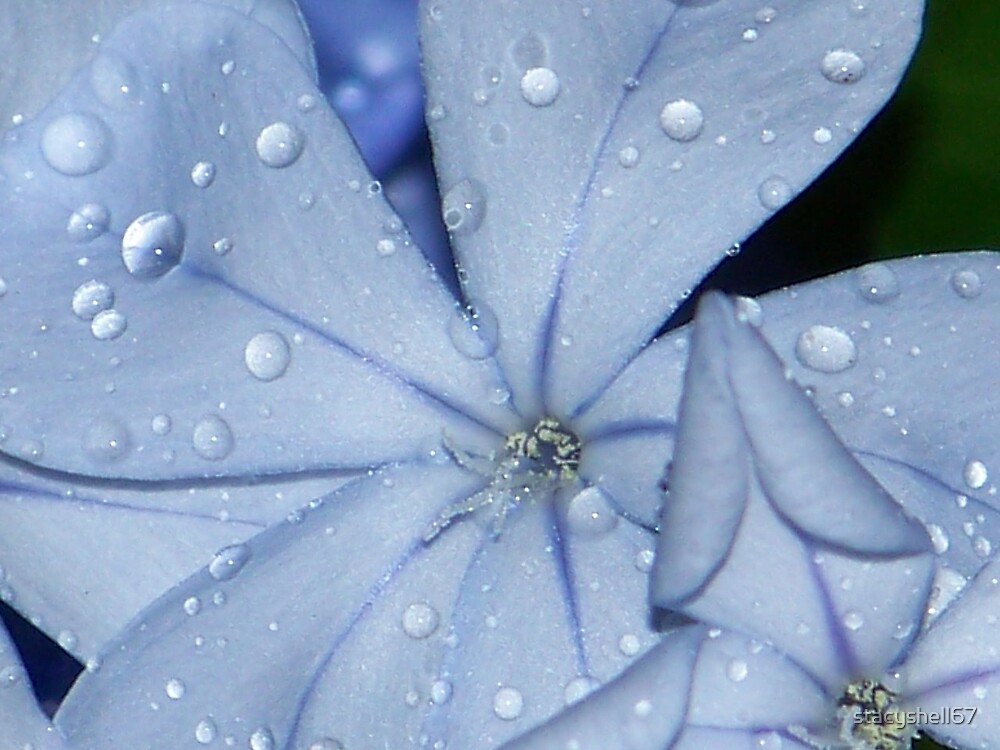 Blue rain by stacyshell67