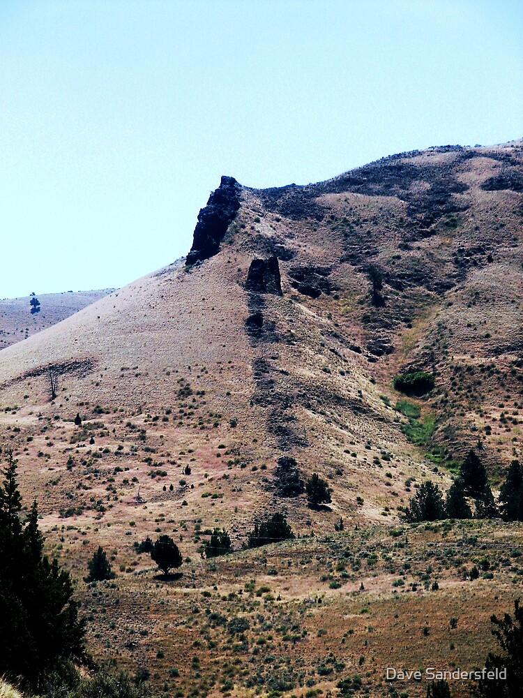 Central Oregon basalt lavaflows seeped out of cracks in rocks by Dave Sandersfeld