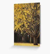 Ginkgo Tree Greeting Card