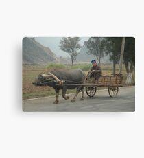 Rural China Canvas Print