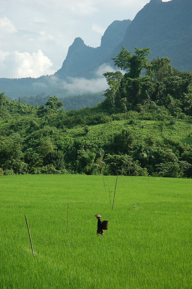 In the mountains, Laos by Peter Gostelow