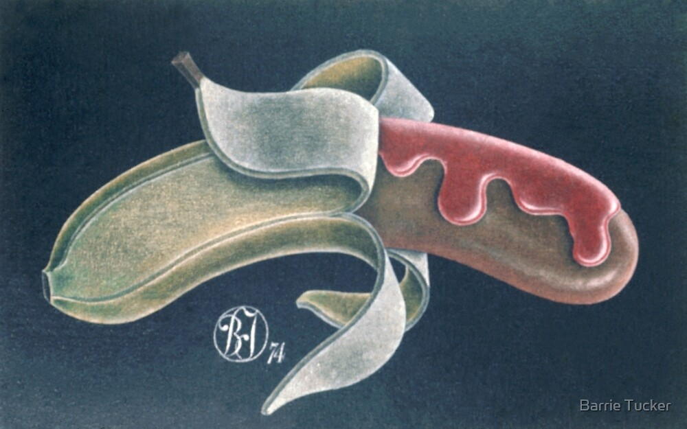Banana Dog by Barrie Tucker