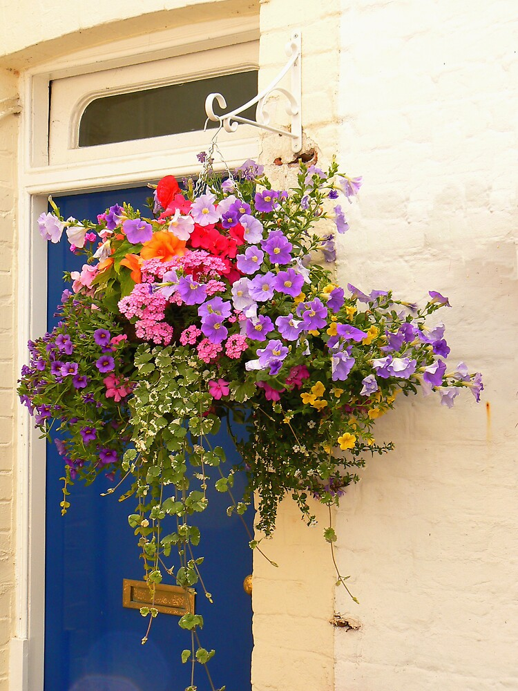 Hanging Basket by JPPhotography