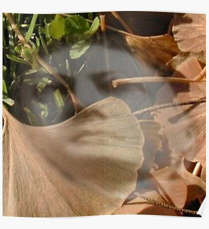 Ghost In leaves Poster
