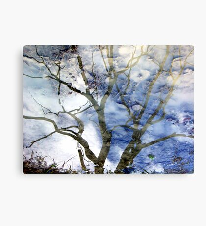 Ice puddle reflections Metal Print