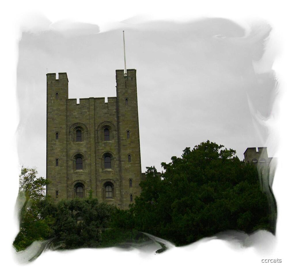 Penrhyn castle 2 by ccrcats