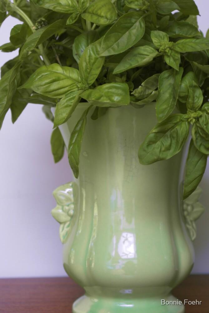 Basil bouquet by Bonnie Foehr