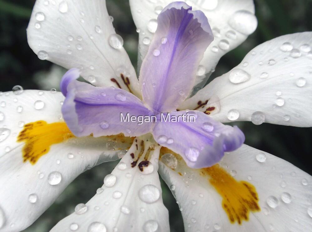 Descending Rain by Megan Martin