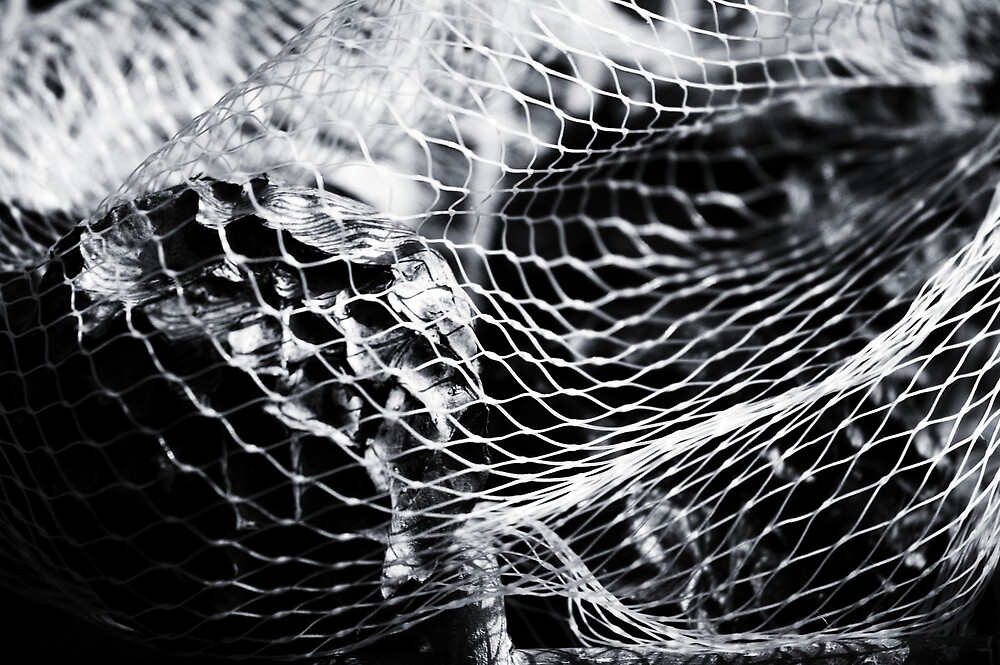 Netted Passion by Lauraloz