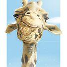 Madame Giraffe von David Le Cardinal