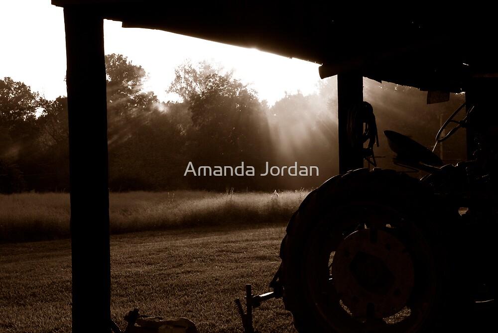 Burnt Sienna Sunrise by Amanda Jordan