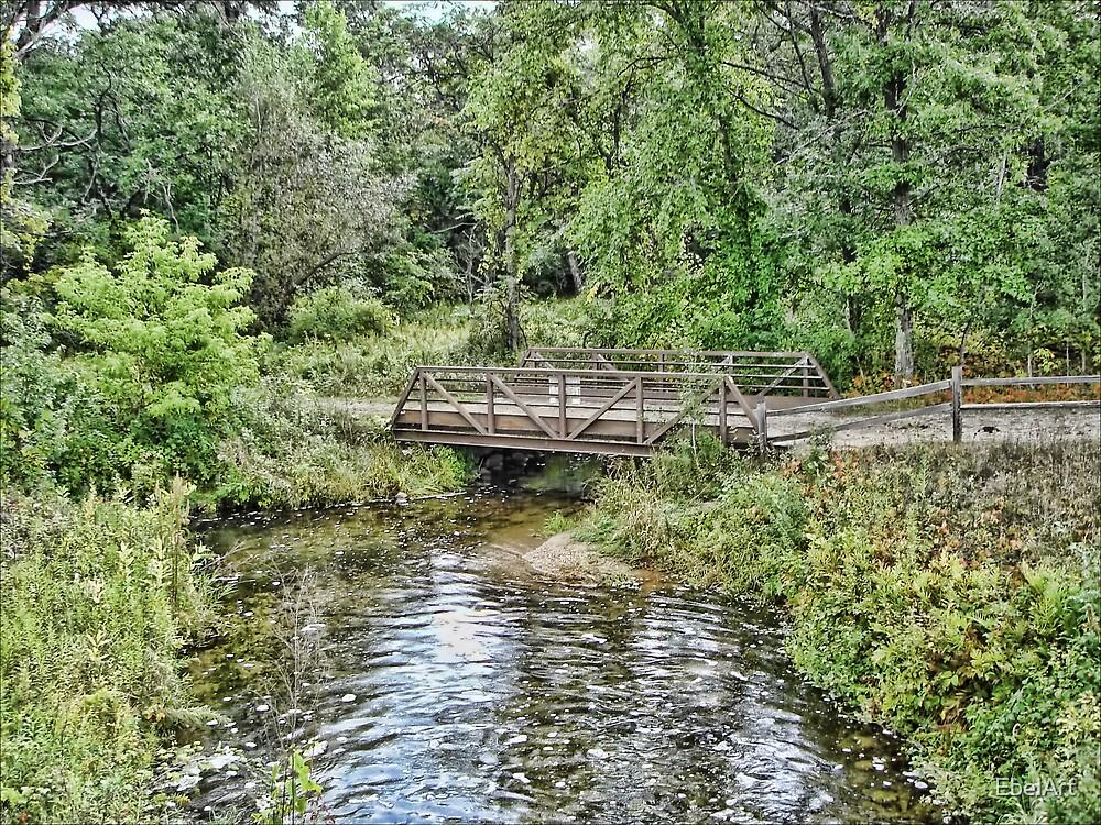 Hartman Creek by EbelArt
