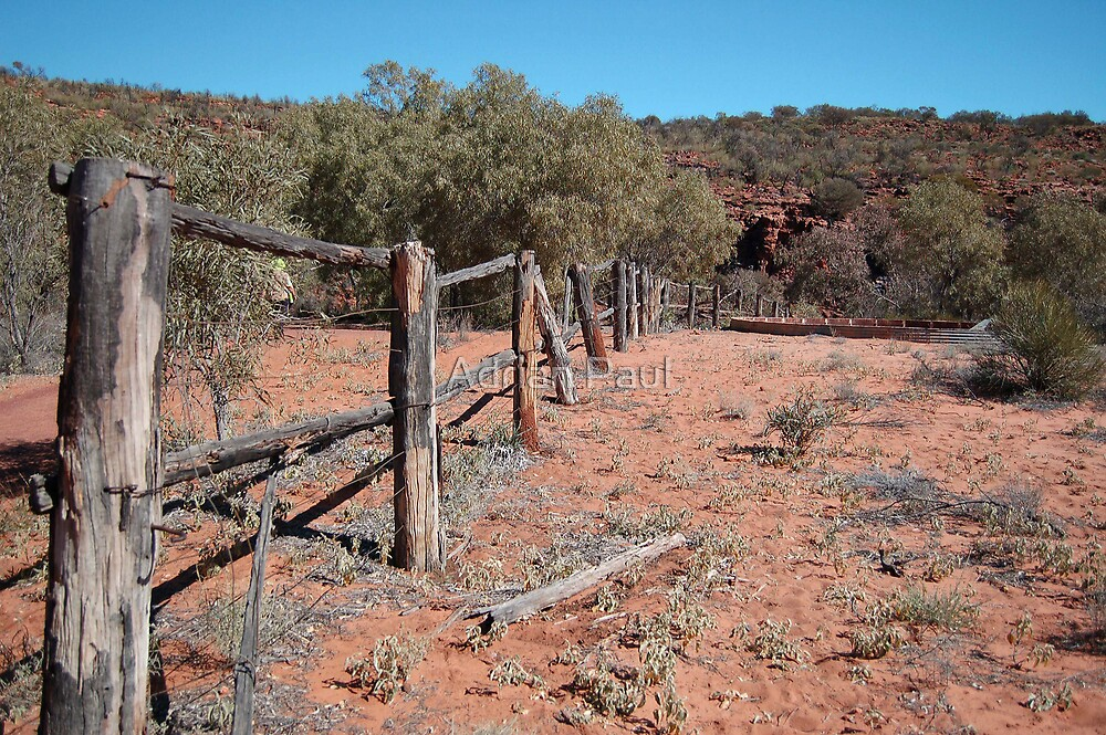 Kathleen Springs, Watarrka National Park, Northern Territory, Australia by Adrian Paul