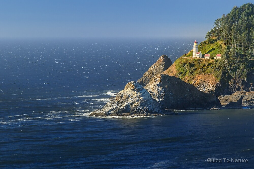 Heceta Head View by Owed To Nature