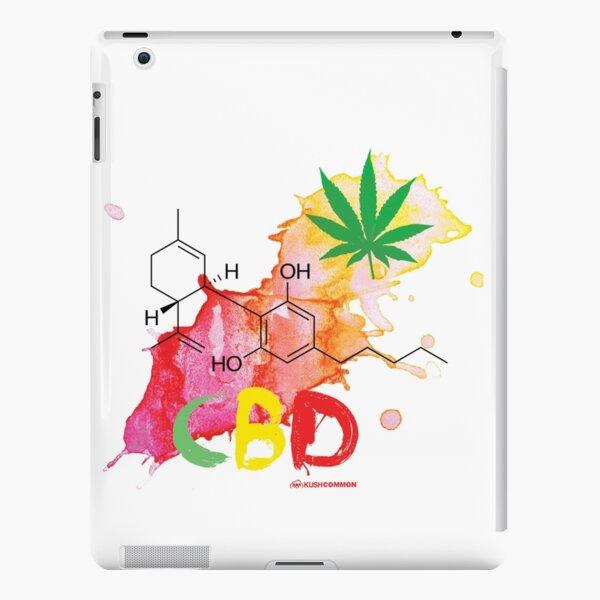CBD Splash iPad Snap Case
