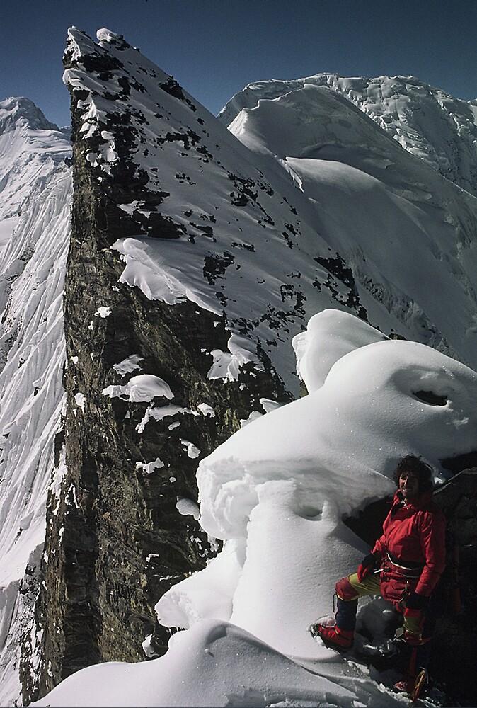 Gondoro Glacier Pakistan by gondwana