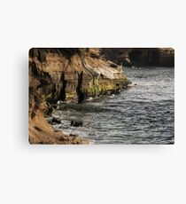 Scenes From Shell Beach In La Jolla - 1 © Canvas Print