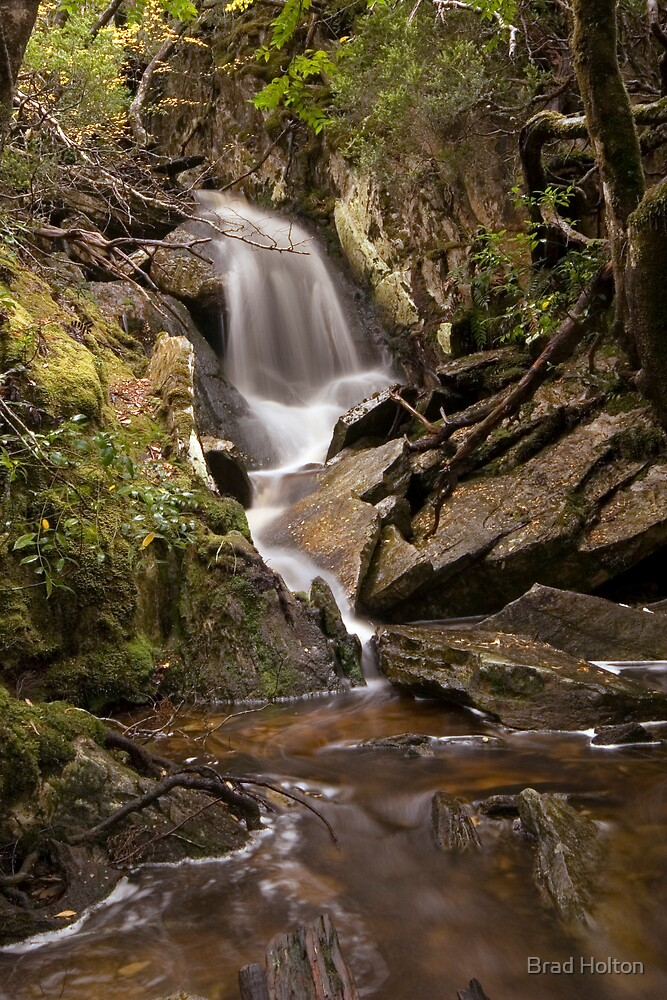 Falls near Cradle Mountain by Brad Holton