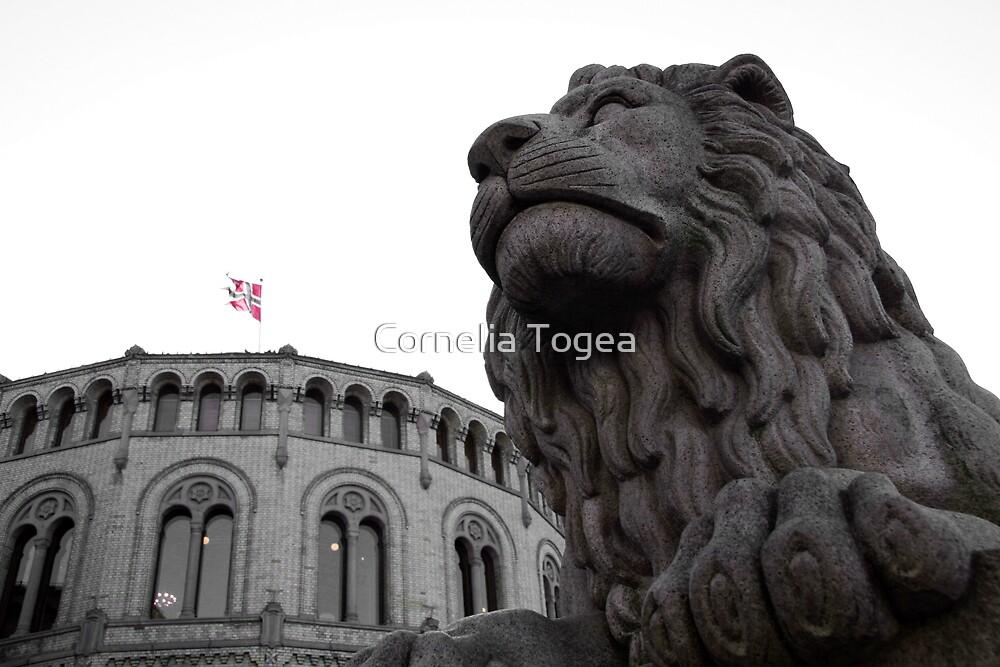 Løvebakken by Cornelia Togea