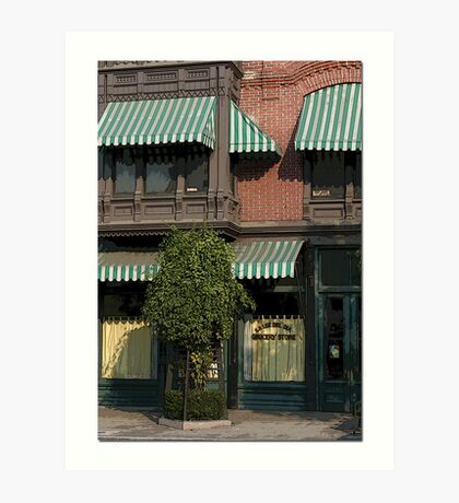 Store Front Art Print