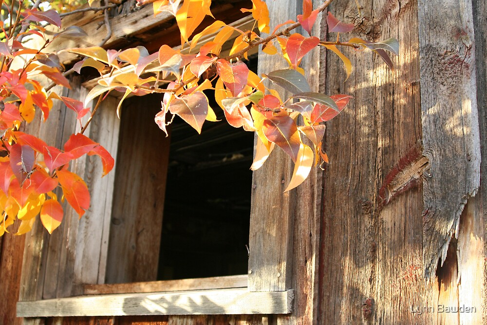 """""""Fall At An Abandoned  Ranch House"""" by Lynn Bawden"""