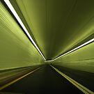 Tunnel Vision by Gayle Dolinger